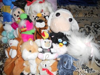 куклы,машинки,плюшевые  игрушки заводные, совки,ведерки, , цена договорная,МНОГО МЯГКИХ ИГРУШЕК, ,ОТ100 РУБЛЕЙ, ,в зависимости от размера, Состояние: Б/у в Астрахани