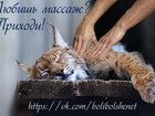 Увидеть foto Массаж МАССАЖ МАССАЖ МАССАЖ! 32795237 в Барнауле