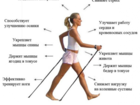 Новое фото  Скандинавская ходьба – это ходьба с палками, 34410648 в Барнауле