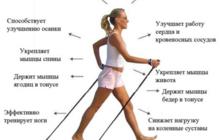 Скандинавская ходьба – это ходьба с палками