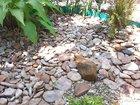 Природный камень речной