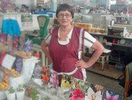 Продаю луковицы и корни цветов Продаю луковицы лилий LA-гибридов, гладиолусов и