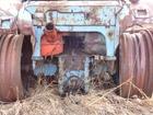 Свежее foto Трактор продам заднюю часть трактора МТЗ-82 38977800 в Братске