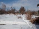 Просмотреть фотографию  Продам СНТ Станкостроитель-1 Чурилово 56835158 в Челябинске
