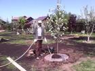 Свежее изображение  Садовник, Уход за садом, 38498943 в Дмитрове
