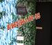 Изображение в Электрика Электрика (услуги) Частный мастер, выполнит Электромонтажные в Дмитрове 0