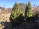Просмотреть фотографию Дома Дача в селе Хорошово, 15 соток земли 66464233 в Коломне