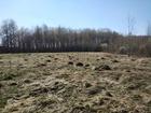 Новое фотографию Земельные участки Участок 30 соток ЛПХ в деревне Селиваниха 69521475 в Егорьевске