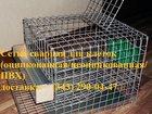 Фото в Строительство и ремонт Разное Сетка сварная оцинкованная в рулонах 6х6х0, в Екатеринбурге 58