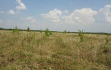 Продам земельный участок на Черной слободе