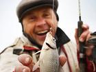Изображение в Отдых, путешествия, туризм Товары для туризма и отдыха Для любитей спокойного отдыха и рыбалки, в Геленджике 700