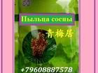 Увидеть изображение Товары для здоровья Пыльца сосны против туберкулеза 34146198 в Грозном