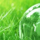 Новый динамичный, экологический бизнес- проект