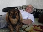 Увидеть изображение Стрижка собак где можно подстричь собачку пикинес-девочка? 34687516 в Ханты-Мансийске