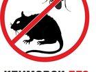 Просмотреть изображение  Жизнь без тараканов в Щербинке Климовске Домодедово 32287376 в Щербинке