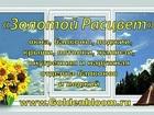 Увидеть foto Двери, окна, балконы Окна, лоджии, балконы 38996794 в Ижевске