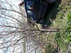 Смотреть foto Сады Продам дачу СНТ Урал в Завьяловском районе 69823975 в Ижевске