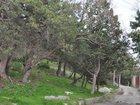 Фотография в Недвижимость Земельные участки Предлагаем к продаже земельный участок 15 в Ялта 11250000