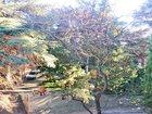 Изображение в Недвижимость Агентства недвижимости Продам квартиру в Ялте, Загородная, 2 к. в Ялта 5600000