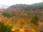 Фото в Недвижимость Разное Продам хороший видовой земельный участок в Ялта 6800000
