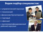 Фото в Работа Разное Группа Супер профессионалов по подбору персонала в Ярославле 5000