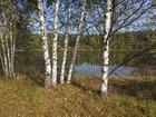 Увидеть foto  Земельный участок в живописном месте, на слиянии двух рек, в лесном массиве, 250 км от МКАД 68242141 в Москве