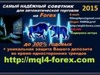 ���� � ������,  ������ ������ ����� �������� � ���������� �������� Forex � ������������ 1