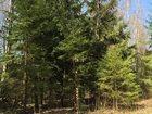 Смотреть фото  В продаже лесной участок 32 сотки, Киевское шоссе 32777510 в Калуге