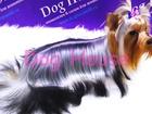 Просмотреть foto  Салон & зоомагазин для животных Dog House в Калуге 40629311 в Калуге