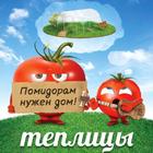 Теплицы для томатов Калязин
