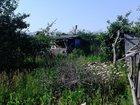 Скачать фото Сады Сад наострове 32946143 в Казани