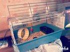 Изображение в Домашние животные Птички Продам клетку фото старое сейчас в хорошем в Казани 1000