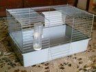 Изображение в   Продаю клетку для кролика итальянской фирмы в Казани 0