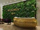 Новое изображение Кухонная мебель Фитостены, Вертикальное озеленение, 38324397 в Казани