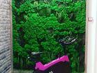 Новое изображение Другие предметы интерьера Фитостена стабилизированный мох 57017376 в Казани