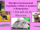Фотография в   Предлагаю комплексное обслуживание по стрижке в Кемерово 0