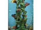 Скачать бесплатно foto Аквариумы Оригинальный аквариум marvelous aqva на 150 л 41589157 в Кемерово
