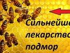 Смотреть фотографию  Пчелинный подмор, Настоянный т, 8 902 755 3423 66335532 в Кемерово
