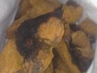 Фотография в Красота и здоровье Услуги народной медицины Продается березовая чага в сухом виде. Размер в Кирове (Кировская область) 145