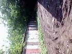 Скачать бесплатно фото Сады овощная яма в хорошем состоянии 67748673 в Кирове