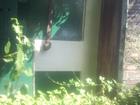 Фото в Недвижимость Сады Садовый участок 6. 2 соток земли. дом кирпичный. в Копейске 120000