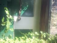 продам сад в СНТ Красная горнячка Садовый участок 6. 2 соток земли. дом кирпичны