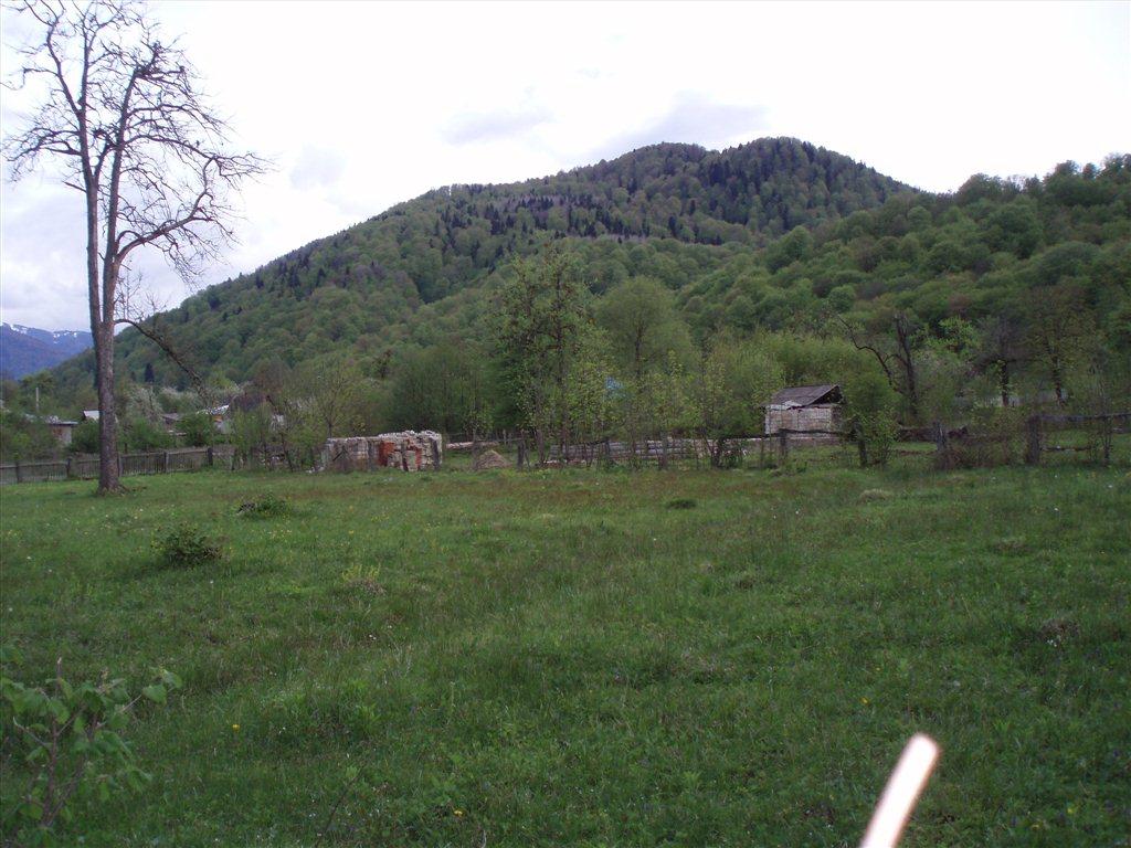 Недвижимость России на   tvoyadresru