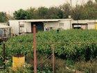 Новое изображение  Сдам в аренду дачу с теплицами 33587937 в Краснодаре