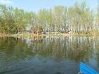 Уникальное фото  Рыбалка на линя и отдых Золотой карась 35138284 в Краснодаре