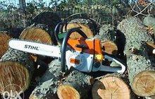 Предложение: Спил Деревьев в Краснодаре