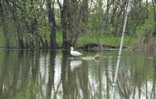 Рыбалка на плотву в Краснодарском крае и отдых