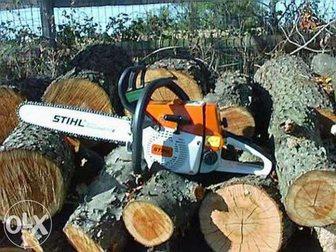 Скачать бесплатно foto Резюме Предложение: Спил Деревьев в Краснодаре 32566579 в Краснодаре