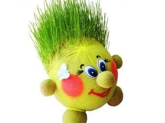 Новое фото Курсы, тренинги, семинары Живая игрушка, эко-сувенир «Травянчик» 34950700 в Краснодаре