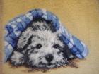 Фото в Мебель и интерьер Ковры, ковровые покрытия Подарите своему ребенку кусочек счастья! в Красноярске 5000